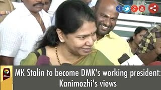 Kanimozhi's views on MK Stalin to become DMK's working president