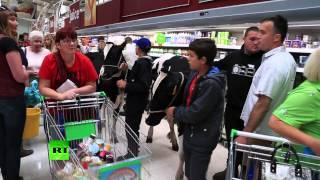 Британские фермеры в знак протеста привели коров в супермаркет