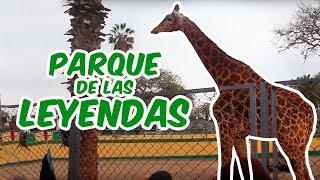 002 Parque de las Leyendas // Lima Zoo PART I