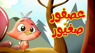 عصفور صغيور - طيور بيبي | Toyor Baby