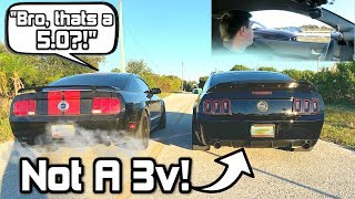 He Thought I Had a 3v! LOL *REALLY SURPRISED!* (5.0 Coyote Swap VS 3v GT Mustang)