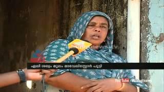 Rat fear ,Maveli ,store  closure in Kannur : Chuttuvattom News