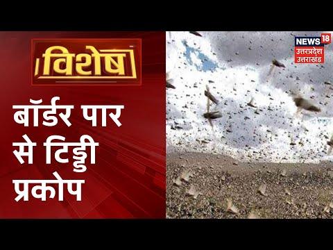 एक तरफ कोरोना से तबाही, तो अब बॉर्डर पार से किसानों के लिए टिड्डियाँ आफत बनकर है आई ! | Vishesh