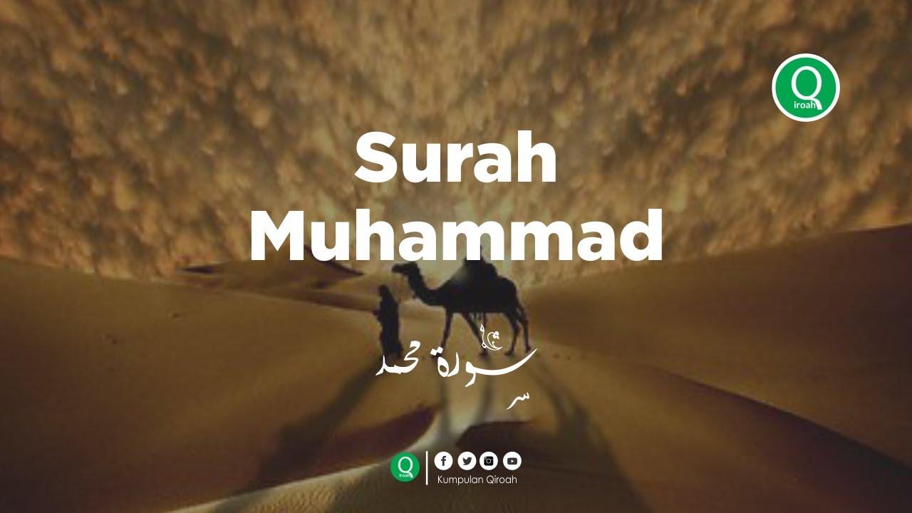 Surah Muhammad سورة محمد - Yuli Maulidiyah Murottal Al Quran Merdu