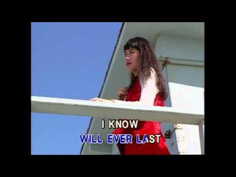 Take Me Now - David Gates (Karaoke Cover)