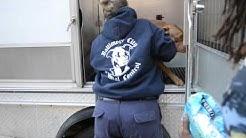 "Baltimore Animal Control: ""a thankless job"""