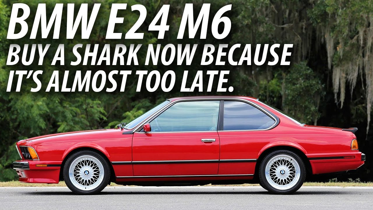 BMW E24 M6  Buy a Shark Now Because Its Almost Too Late  YouTube