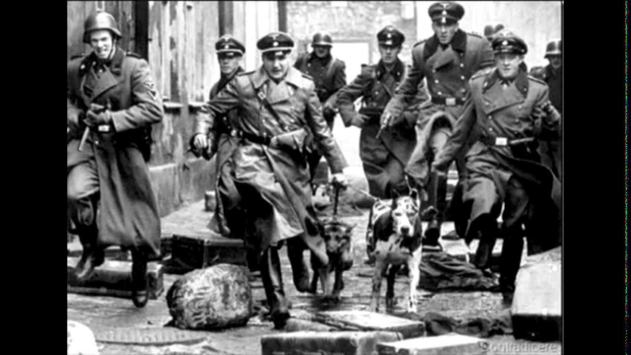 terror and violence in nazi germany The government of nazi germany was a fascist, totalitarian state  such  violence and terror are also the primary tools of right-wing totalitarian regimes to .