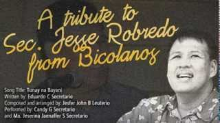 A Tribute to Sec. Jesse Robredo from Bicolanos