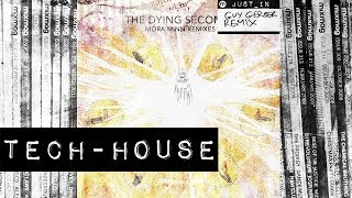 TECH-HOUSE: The Dying Seconds - Mora Minn (Guy Gerber Remix Dub) [Rumours]