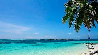 Relaxar! Suave Som das Ondas e Praia Paradisíaca