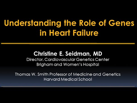 Genes and Heart Failure Video - Brigham and Women's Hospital