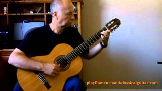 Classical Guitar - Pavane for a Dead Princess