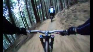 Queenstown Bike Park - Armaggedon to Thingamajig