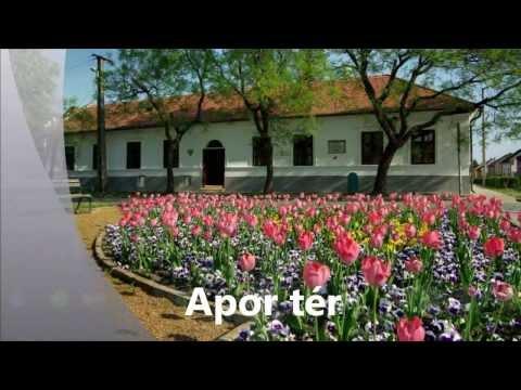Gyula a virágok városa