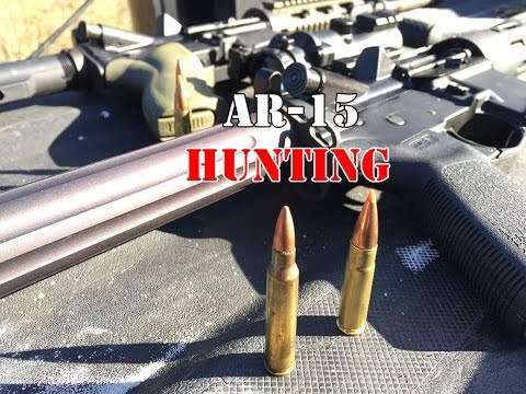 Hunting With AR's 101