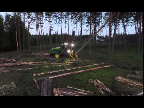 W dechę film o drewnie