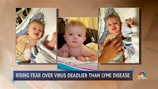 Health Officials Warn of Deadly Powassan Virus - NBC 08-05-2017