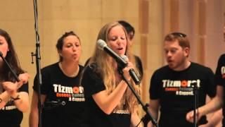 Hafachta - Tizmoret - Kol HaOlam 2014