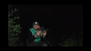 Батл между классикой горохом и POP UP Карп разрывает леску 0 4мм Ловля карпа Ночная рыбалка