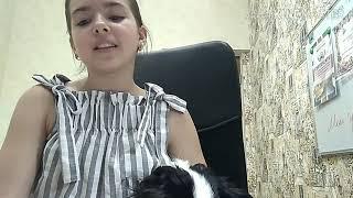 Что нужно взять с собой на море собаке) /Папильон Беня/