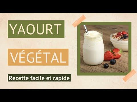recette-[3]-yaourt-au-lait-végétal-et-à-la-framboise-fait-maison-sans-yaourtière-!