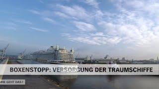 Versorgung und Abfertigung der Traumschiffe-Kreuzfahrtschiffe im Hafen Hamburg | NDR Doku