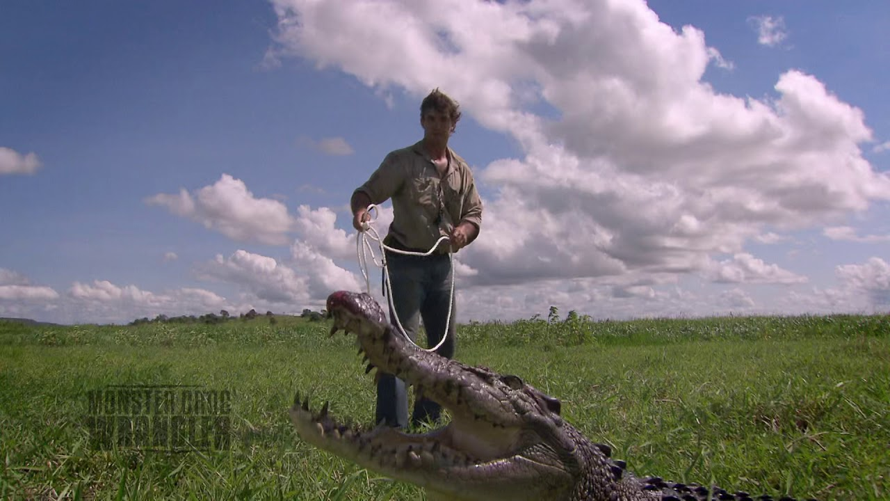 Download This Croc is TOO BIG for this trap!