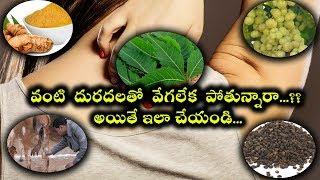 వంటి  దురదలతో  వేగలేక  పోతున్నారా?? అయితే ఇలా చేయండి... |  Skin Infection | Telugu Health Tips