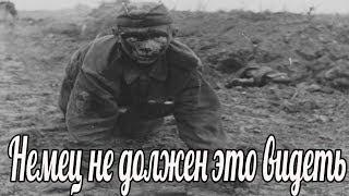 Немец не должен это видеть. окопная правда , Воспоминания Лапшина Н.Ф.( военные истории  1941-1945)