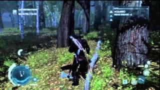 Assassins Creed 3 best bear hunting location