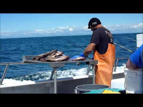 Slammer Fishing