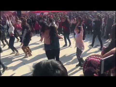 Delhi's best ever Flash Mob