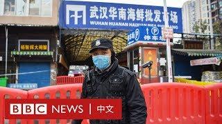 武漢解封:菜市場生意慘淡 店主稱「海鮮有消毒的」- BBC News 中文