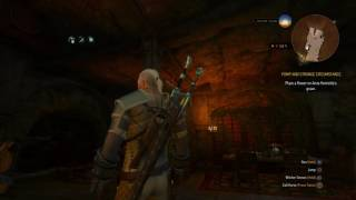 """The Witcher 3: Wild Hunt """"I Love this song (Wolven Storm)"""" Im SO ALONE"""