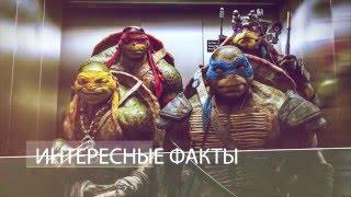 Интересные факты в фильме Черепашки ниндзя