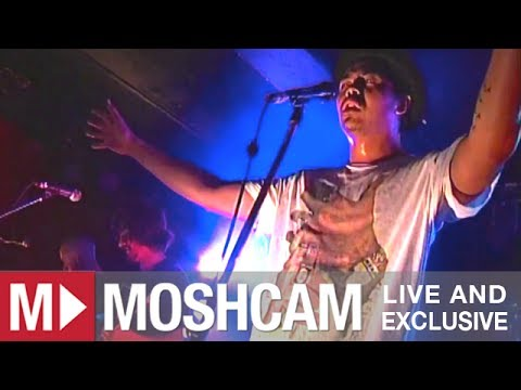 The Temper Trap - Science Of Fear | Live in Sydney | Moshcam