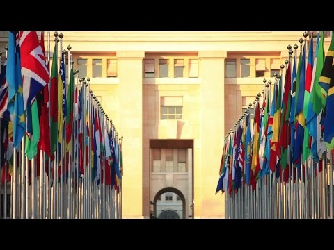 flags of the world at the UN headquarters Geneva. Stock Footage