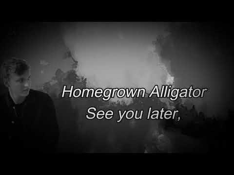 George Ezra - shotgun (lyrics)