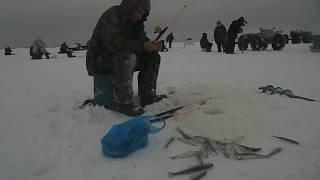БревенникКонвеер,Отдых и рыбалка Белое море,р он Пурома