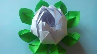 Оригами Кувшинка - красивые цветы из бумаги своими руками(Размер листков бумаги 13,5 x 7,5 сантиметров. Красивая кувшинка из бумаги - один из самых красивых цветков ориг..., 2014-02-20T11:03:59.000Z)