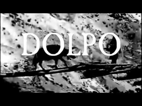 "DOLPO ""Yak Path Session"""