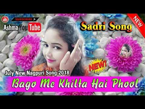 Bago Me Khilta Hai Phool  Odiasadri   July New Nagpuri  Song 2018   Singer Ramesh