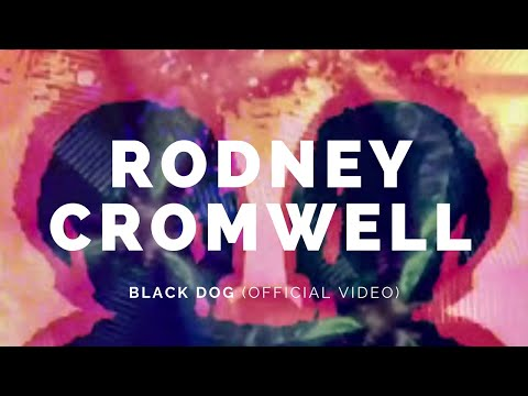 RODNEY CROMWELL: Black Dog (Version) (Bot6)