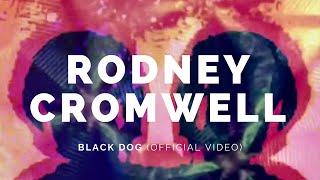 RODNEY CROMWELL: Black Dog (Version) (Bot6)