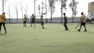 A game of hockey - Chak De India style, in Punjab