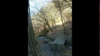 Trails de Rousset - Lac de Serre-Ponçon (42 et 20 km)