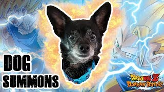 MY FIRST EVER DOG SUMMONS!? WILL HE HAVE MORE LUCK THAN ME!? | DRAGON BALL Z DOKKAN BATTLE (JP)