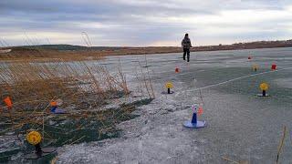 УСТАЛ БЕГАТЬ ЗА ЖЕРЛИЦАМИ Последняя рыбалка со льда Закрытие зимнего сезона 2021
