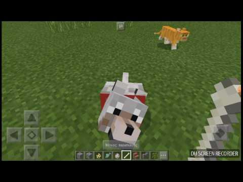 Φτιάχνω σκύλους και γάτες στο minecraft!